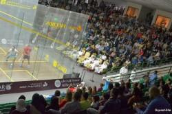 Qatar to host 2014 Men's World Championship