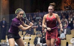 Egyptians Dominate As Windy City Open Finalists Decided