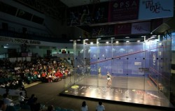 Massaro and El Sherbini to Contest Women's World Championship Final