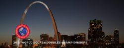 World Hardball Doubles