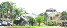 Nicol Davidjoins WSF Ambassador visit To Kenya